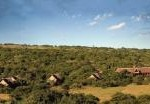 Bush Lodge - Amakhala Private Game Reserve