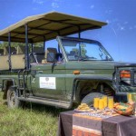 elephant-rock-private-safari-lodge-bush-breakfast